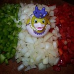 Mexican ducks invade the kitchen!
