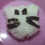 Sushi Cat – Onigiri Chicken Rice Balls