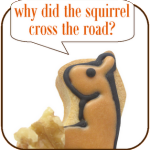 Why did the squirrel cross the road? – Silly squirrel cookies