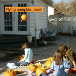 How to puree pumpkin – Throw it across the yard!