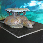 Incredible turtle and elephant cake